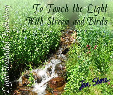 To Touch the Light with Stream and Birds by Jon Shore